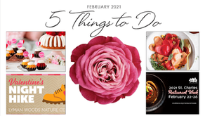 5 THINGS TO DO | Enjoy a Night Hike, Indulge In a Bundtini (or 2), Make Heart Shaped Ravioli & More!