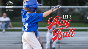 LET'S PLAY BALL!   Register Today for Baseball Programs at the Naperville Park District