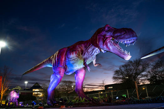 DINO SAFARI | Dinosaurs are Invading Fox Valley Mall