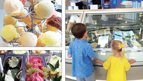 SAVORY & SWEET SISTERS | Frost Gelato, Naperville