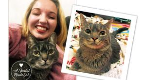 FAMILY LOVE STORY | Brooke Sokoloski