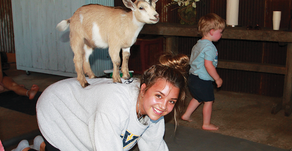MOM'S LITTLE BLACK BOOK   Bringing the Family Together With Goat Yoga
