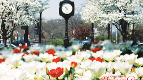 DOWNTOWN DOWNERSGROVE | Why It's a Trending West Suburban Hot Spot