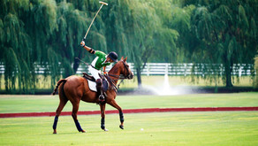 UNIQUE IN SUBURBIA | A Polo Club In the Heart of Beautiful Oswego