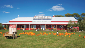 UNIQUE IN SUBURBIA | Abbey Farms In Aurora