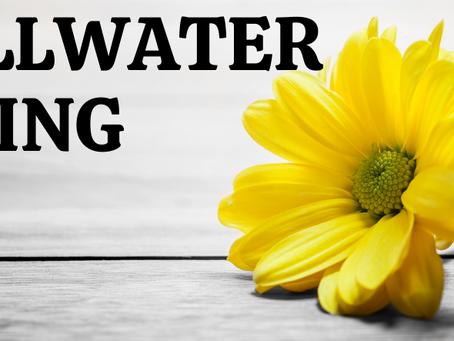 Stillwater Spring