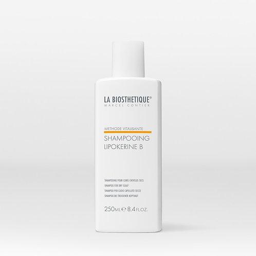 Shampooing Lipokérine B