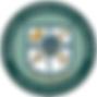 holyoke logo.png
