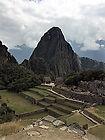 Bonnie Pic Machu Pichu.jpg
