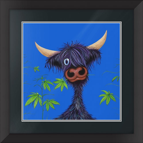 """""""Pot Callin' the Cattle Black"""" Limited Edition Framed Print"""