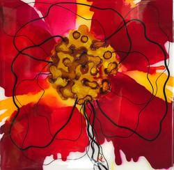 Floral Series – B1 - Framed