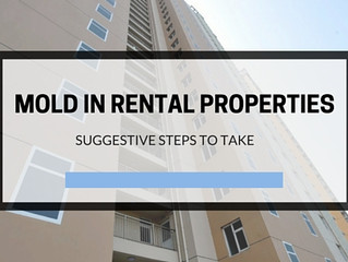 Landlord Liability for Mold in Rental Properties