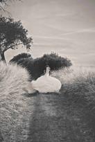 32_NICOLE_GROSS_FOTOGRAFIE_HOCHZEIT_HOCH