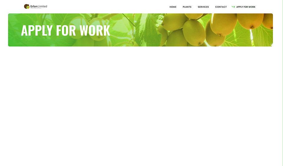 Blank Website .jpg