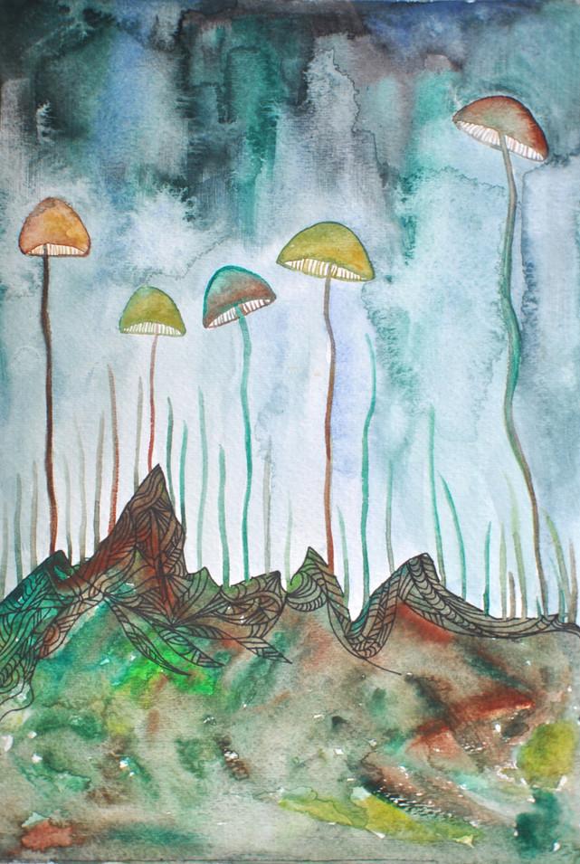 Mushroom Fest