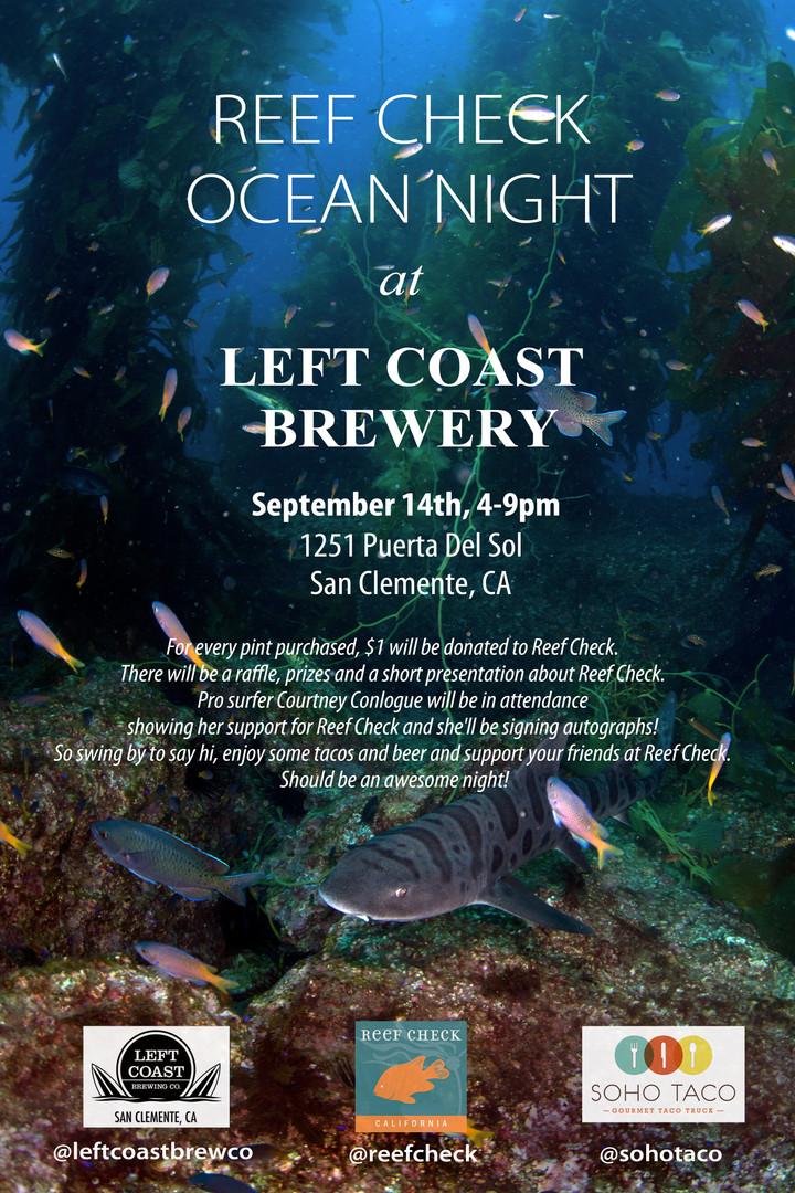 OceanNightLG4.jpg