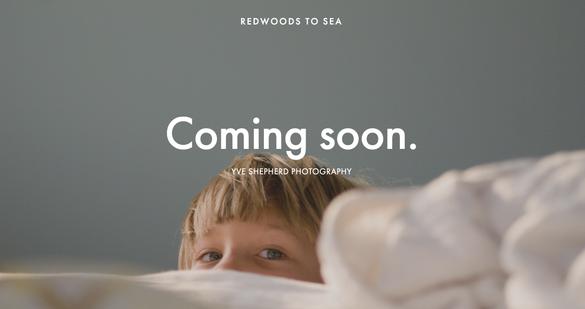 Redwoods to Sea