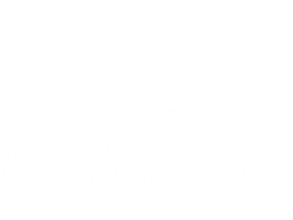 Best Worst Cantina White
