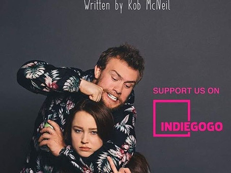 "Indiegogo Campaign Closed for ""Don't Call it a Comeback"""