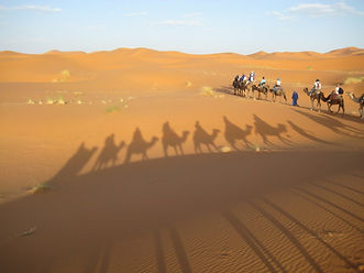 Arabic students experience full cultural immersion in the Sahara Desert