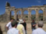 Arabic students learn about Volubilis