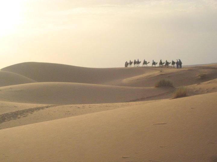 Camel Trek, Merzouga Morocco