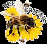 bee-friends-surrey-logo.png