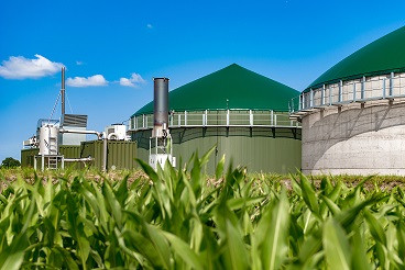 EVENT 20 May: Bioenergy briefing