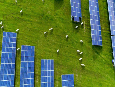 REPORT: Great distributed energy resources potential for NSW primary industries, but obstacles too