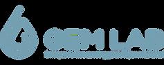GEMLAB Logo WIX_Peq_.png