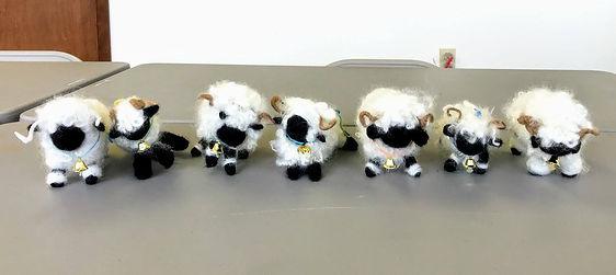 20190314 Student Sheep.jpg