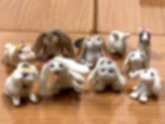 20190223 Students Lop Eared Bunnies.jpg