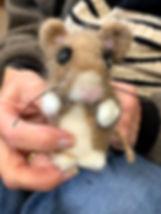 20191109 Mouse 1.jpg