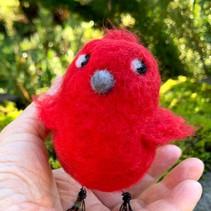 112119 Cardinal.jpg