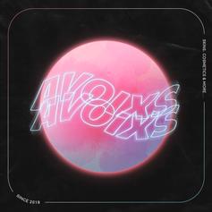 Avoixs Logo.png