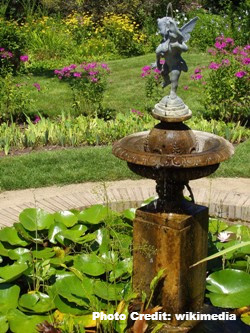 Garden Fountains: 11 Reasons Everyone Should Have One