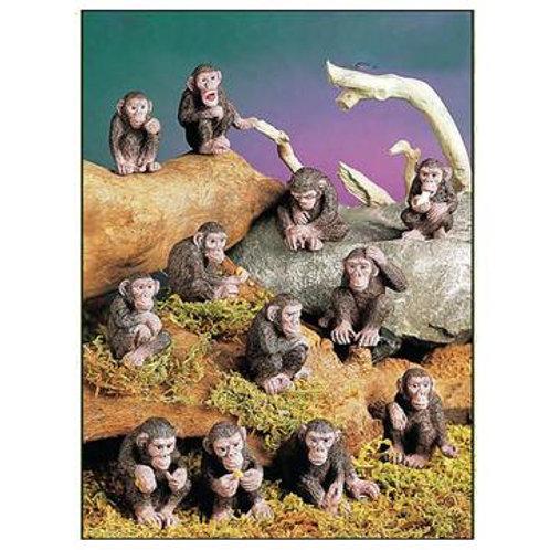 Mini Monkeys