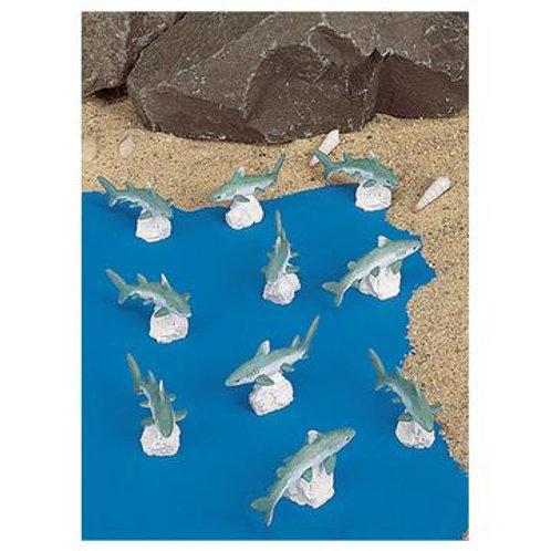 Mini Great White Sharks