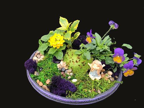 Purple Bowl Fairy Gardens