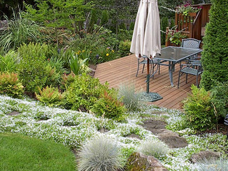 Ten Points to Consider When Designing your Landscape