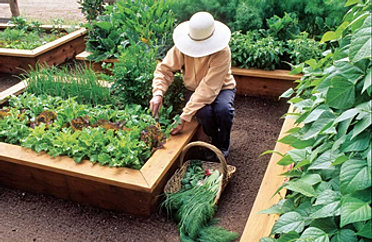Superb ... Girl Patti Moreno Has To Say About Square Foot Gardening At Her  Website: Www.gardengirltv.com View A Video On Benefits Of A Raised Garden  Bed, ...