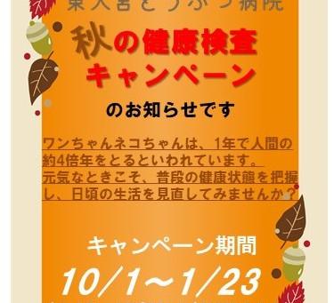 今年もやります!秋の健康検査キャンペーンのお知らせです‼