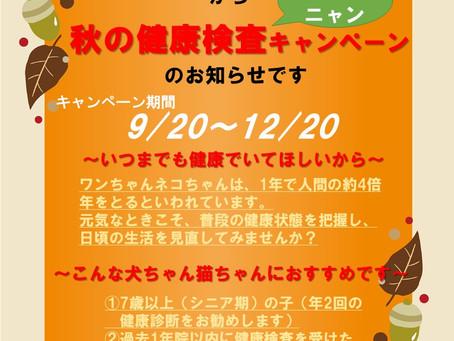9/20~秋のわんにゃん健康検査キャンペーンが始まります!
