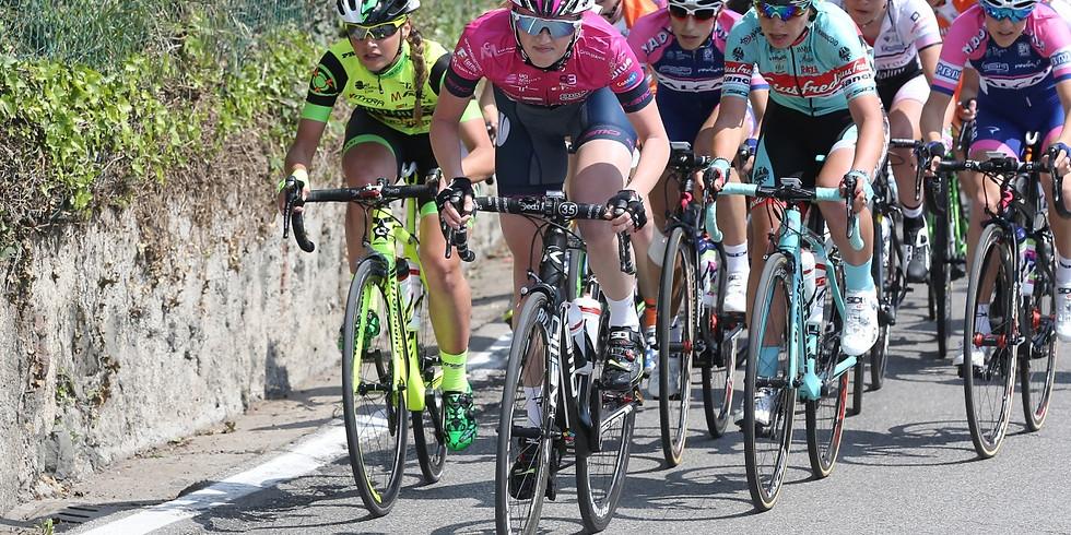 22-23.08.2020 - 22° Trofeo Città di Bovolone - Bovolone (Vr)
