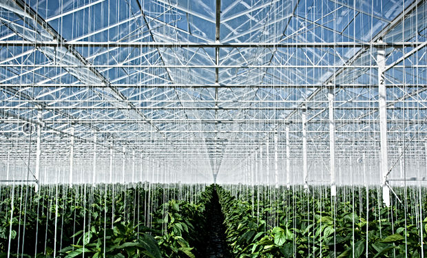 Petrolsec Agricultur and Farms Security