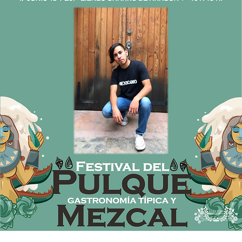 Playera Mexicanos Caballero