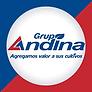 grupo_andina.png