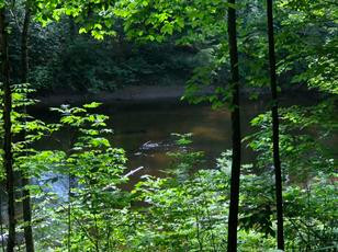 Route 9 - Riverfront Parcel - Schroon, NY - $28,000. Under Contract .70 of an Acre on Schroon River!