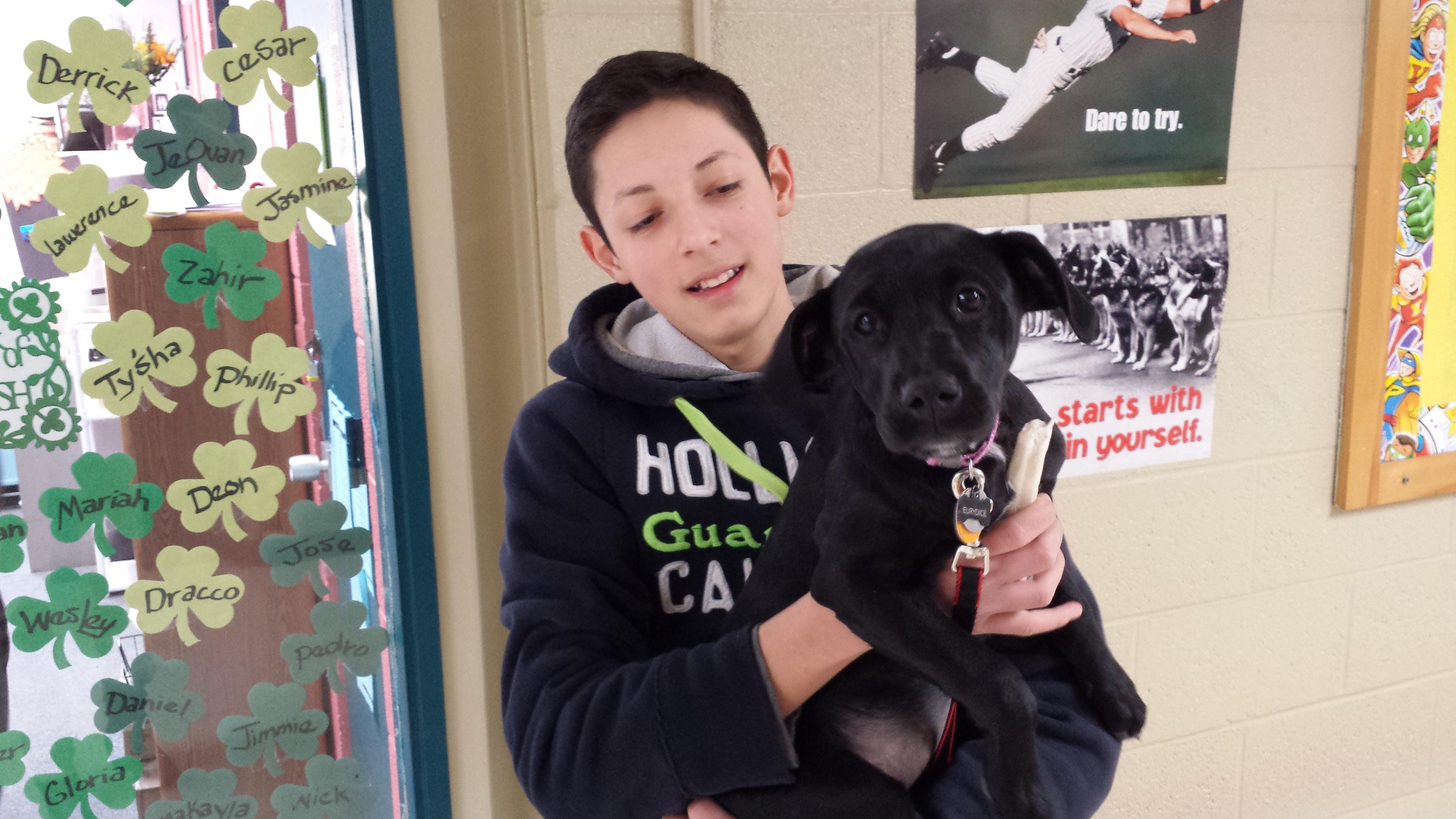 """""""Get a School Dog"""" said Ted Sizer"""