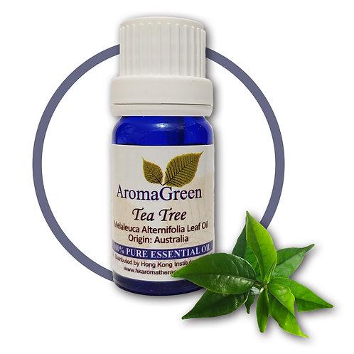 茶樹 Tea Tree